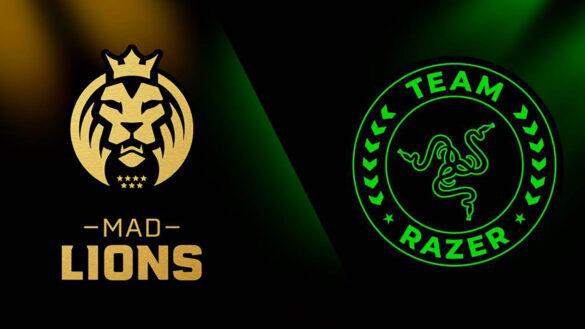 mad_lions_team