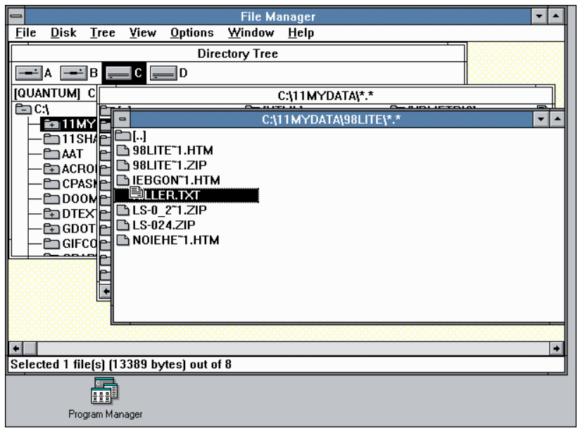 Windows 3.11 Dosya Yöneticisi