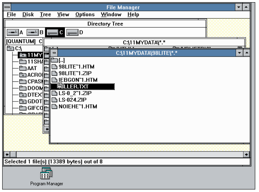 Nostalji, Windows 3.1 Dosya Yöneticisine Dönüş